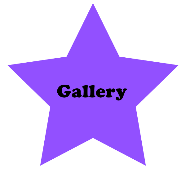 Purple-Star-Gallery